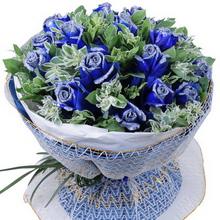19枝蓝玫瑰图片