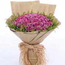 99朵紫玫瑰图片