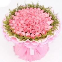66枝粉玫瑰图片