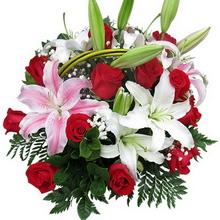 19枝红玫瑰 3枝多头香水百合图片