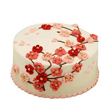 圆形无糖蛋糕图片