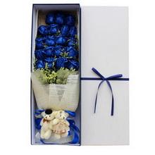 19朵蓝玫瑰,2个情侣小熊图片