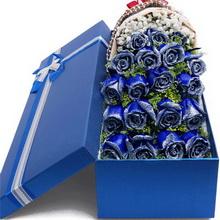 19朵蓝玫瑰图片