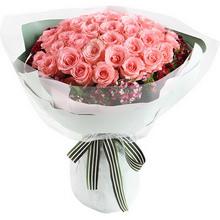 戴安娜粉玫瑰51枝图片