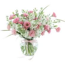 白色紫罗兰2扎,洋桔梗1扎,玻璃花瓶图片