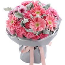 粉色康乃馨19枝,粉色扶郎花5枝图片