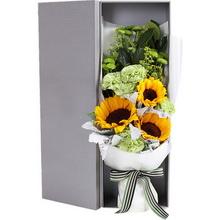 向日葵3枝,绿色康乃馨6枝,礼盒款图片