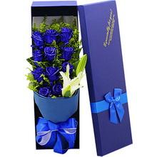 11支精品蓝色妖姬+1支多头白百合,礼盒款图片