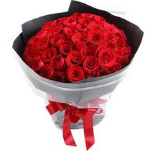 66枝红玫瑰图片