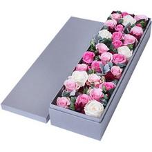 (玫瑰共29支)粉佳人粉玫瑰12枝,苏醒玫瑰12枝,白玫瑰5枝图片