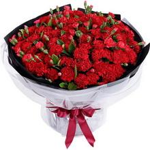 大紅色康乃馨99枝、紅色多頭康乃馨1扎、梔子葉3扎