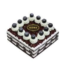 方形蓝莓巧克力慕斯蛋糕,巧克力胚,蓝莓装饰