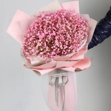 粉色满天星2扎图片