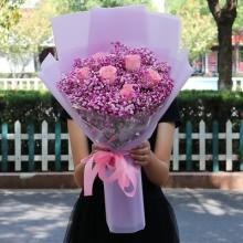 6枝戴安娜玫瑰,彩色满天星一扎图片
