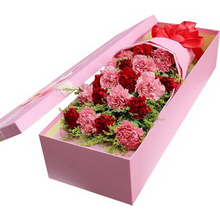 9朵红色康乃馨,10朵粉色康乃馨,黄莺间插