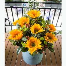 11朵向日葵抱抱桶图片