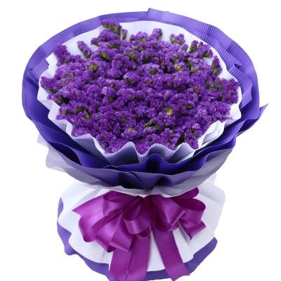 紫色勿忘我一扎图片