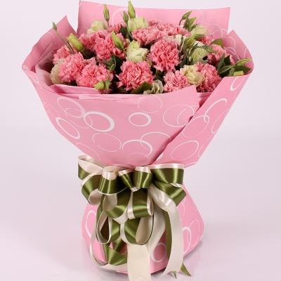 18枝粉色康乃馨图片