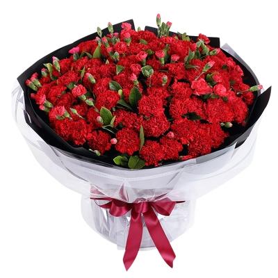 大红色康乃馨99枝,红色多头康乃馨1扎图片