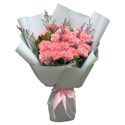 19朵粉色的康乃馨图片