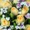 11枝香槟玫瑰+圆形水果蛋糕图片