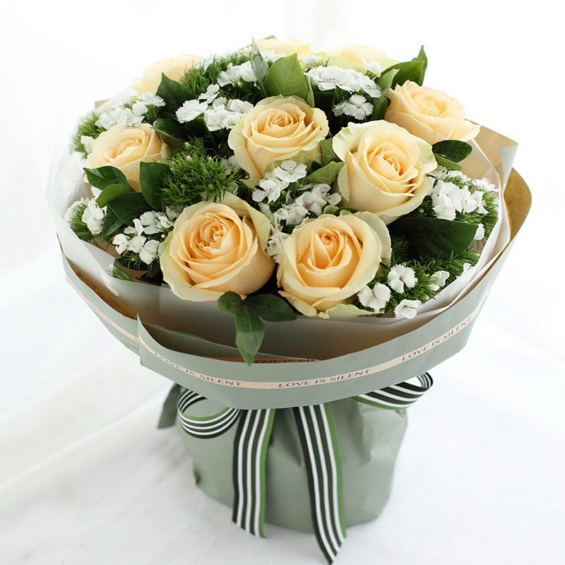 香槟玫瑰9枝图片