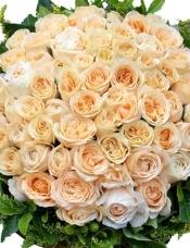66枝精选香槟玫瑰,外围绿叶黄莺