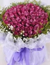 精心挑选99支紫玫瑰,黄莺,满天星外围点缀,美丽迷人