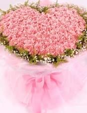 99朵粉色康乃馨,满天星黄莺外围