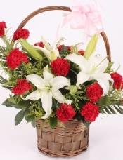 19朵红康乃馨+3枝(6朵以上)百合