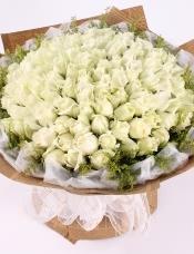 精心挑选99枝白玫瑰,精美黄莺外围,美丽迷人