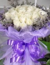 精心挑选33枝白玫瑰,情人草外围,美丽迷人