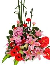 红掌2枝,多头粉香水百合2枝(5朵),红太阳花3枝,红康乃馨5枝,粉康乃馨5枝,紫罗兰3枝