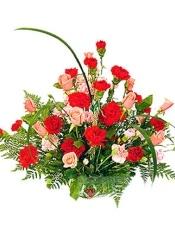 18枝红康乃馨,16枝粉康乃馨,16枝粉玫瑰,配剑叶,排草、绿叶