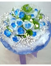 19枝蓝色妖姬(昆明产),每支玫瑰分别精包装,点缀洁白的满天星和绿叶