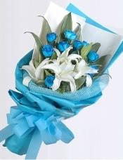 11枝蓝色妖姬(昆明产),5朵白色的香水百合,配叶适
