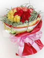 红、粉、黄玫瑰各12枝,初雪草围绕一圈