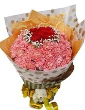 11枝红色康乃馨居中(围绕一圈满天星),55枝粉康乃馨