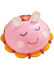我是小兔子,我的生日就要欢乐可爱的萌萌兔。