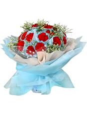 22支红色康乃馨,水晶草丰满
