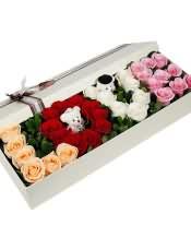 33支混色玫瑰(6支香槟玫瑰+10支红玫瑰+7支白玫瑰+10支粉玫瑰)搭配2只可爱小熊。