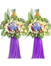 紫绣球、多头白百合、浅绿色洋桔梗、黄掌、粉康乃馨、粉色洋桔梗,搭配适量天堂鸟、散尾葵、龟背叶、剑叶、尤加利,类型 :单个花篮