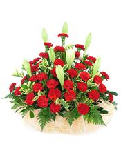 36枝红色康乃馨。4枝双头白百合