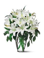 8枝白色百合,绿叶间插。