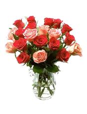 16枝红玫瑰和8枝粉玫瑰,绿叶间插