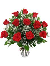 18枝红玫瑰,满天星、绿叶丰满