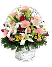 18枝粉玫瑰,8支红玫瑰,12枝粉色太阳花,6枝白百合,各色小花,绿叶