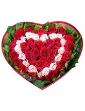 17只戴安娜粉玫瑰,33只红玫瑰,外围黄莺草