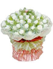 36支白玫瑰,黄英丰满