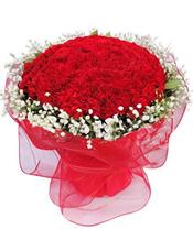 99枝红色康乃馨,满天星围边。